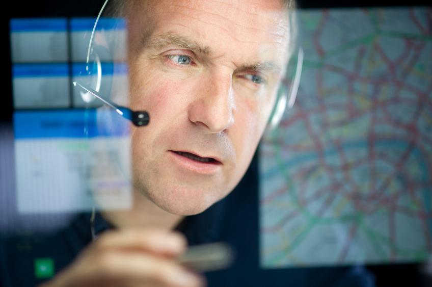 consultante organisation des systèmes d''information